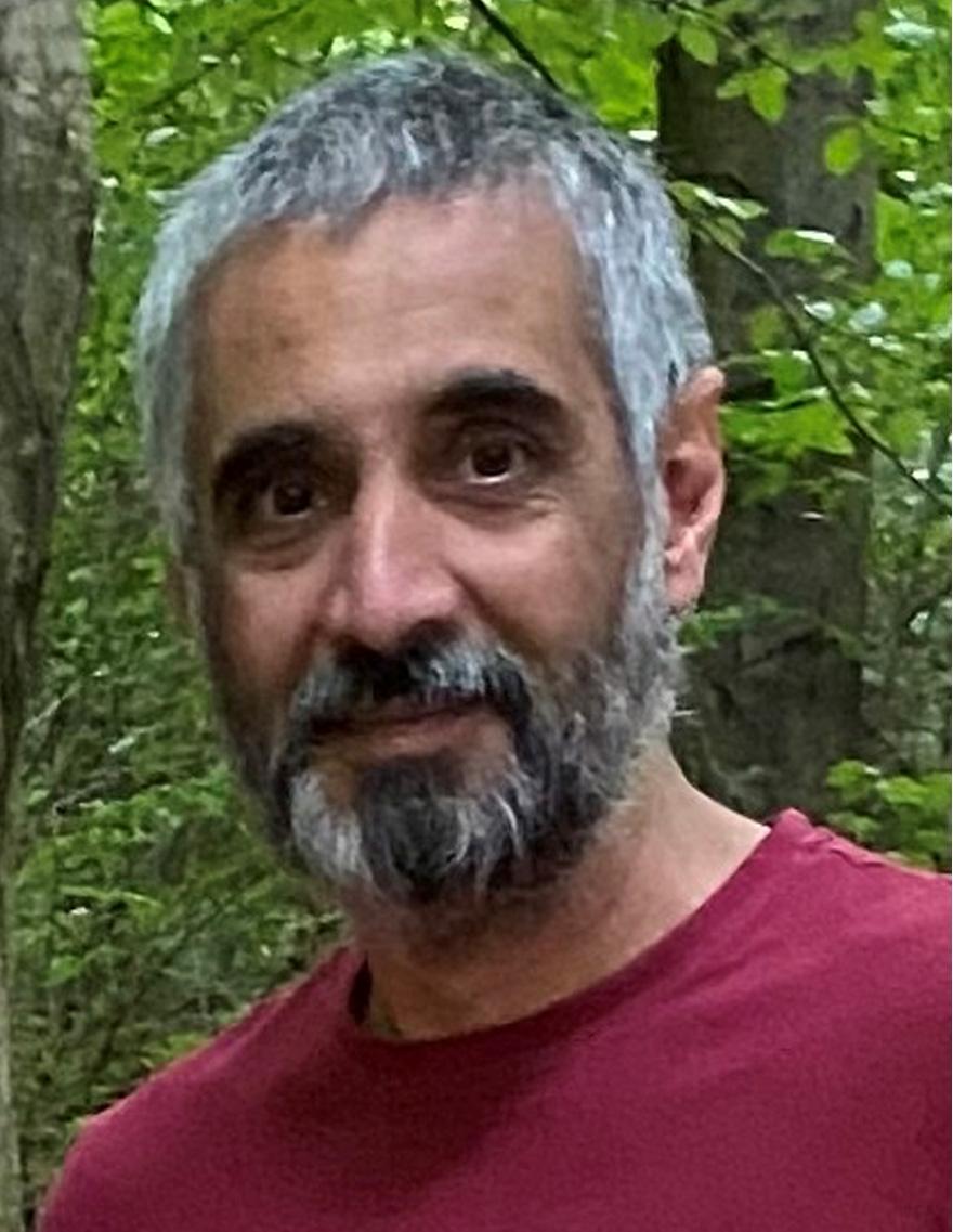 Ș. l. univ. dr. ing. Radu PANAITESCU-LIESS